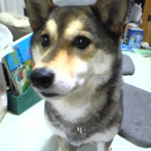 すずきよ's profile|Housekeeping Matching Platform TASKAJI -from 1500 yen/hour