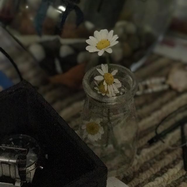 micaのプロフィール・評判|1時間1500円からの家事代行/家政婦マッチングサイト『タスカジ』