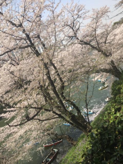 花子's profile|Housekeeping Matching Platform TASKAJI -from 1500 yen/hour