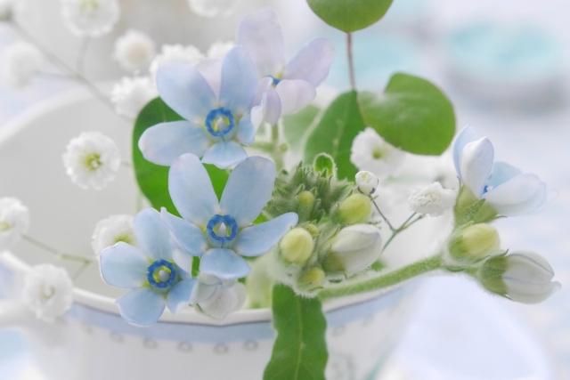 YUMIOさん's profile|Housekeeping Matching Platform TASKAJI -from 1500 yen/hour
